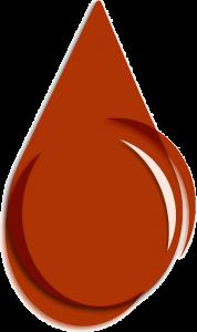 Sanguinamento anale sintomo proctologia